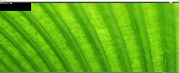 pine64_xrdp-test_mstsc02.png