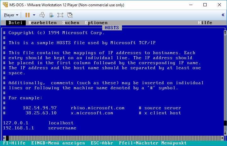 vmware_msdos_hosts
